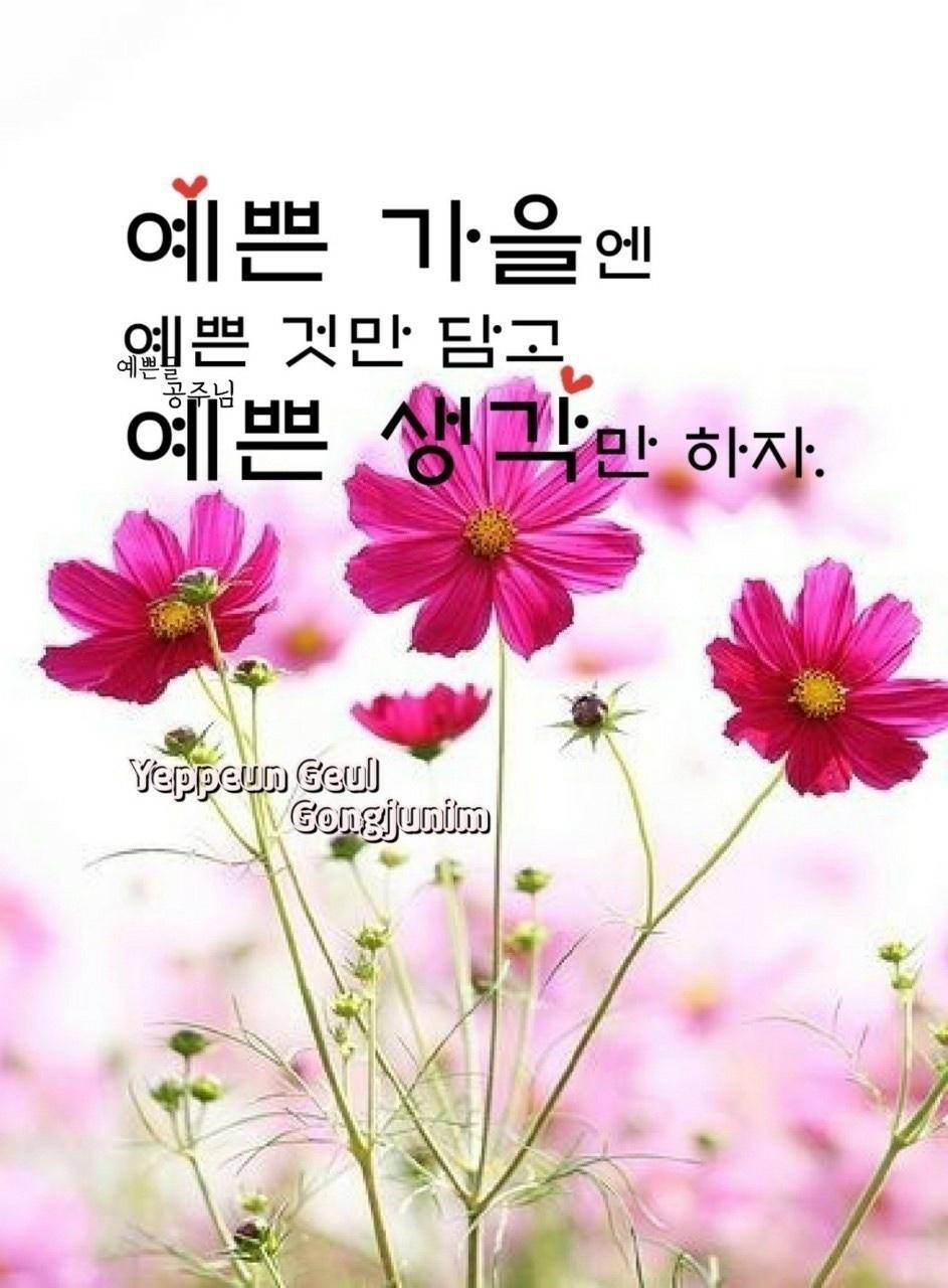 KakaoTalk_20210915_114323882_02.jpg